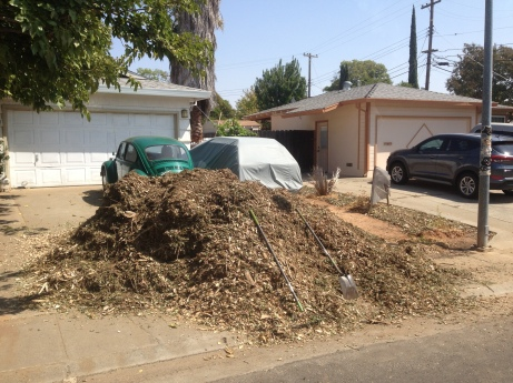 Free mulch from the county!